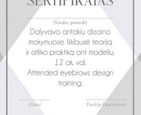 Grafikos dizaineris / Emilija Gražytė / Darbų pavyzdys ID 859213