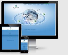 Interneto svetainių kūrimas.  El. parduotuvių kūrimas / E-svetainė  Andrius / Darbų pavyzdys ID 861037