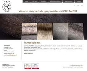 Interneto svetainių kūrimas.  El. parduotuvių kūrimas / E-svetainė  Andrius / Darbų pavyzdys ID 861077