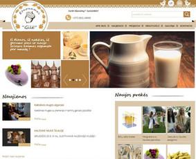 Interneto svetainių kūrimas.  El. parduotuvių kūrimas / E-svetainė  Andrius / Darbų pavyzdys ID 861089