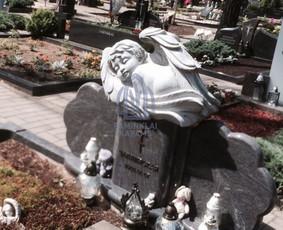Paminklai kapams, kapų tvarkymas, granito plokštės / Tadas / Darbų pavyzdys ID 865985