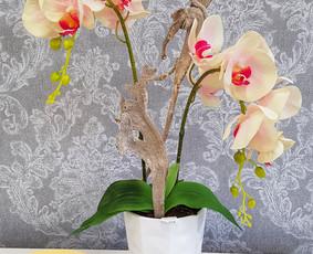 Sandrija - gėlės ir viskas šventėms / Sandrija / Darbų pavyzdys ID 883789