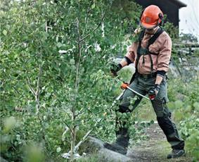 Aplinkos priežiūra, kraštovaizdžio gerinimas