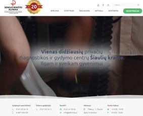 Laisvai samdomas e-komercijos projektų vadovas