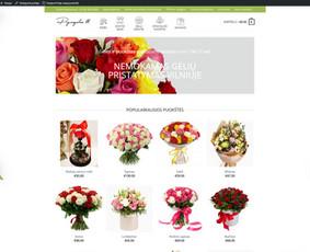 Internetinių svetainių ir el. parduotuvių kūrimas / Marius Zienius / Darbų pavyzdys ID 962443