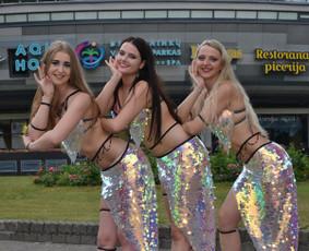 Rytietiškų pilvo šokių šou grupė / Dėl pasirodymo / Darbų pavyzdys ID 970223