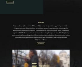 Kokybiškas Svetainių ir El. Parduotuvių Kūrimas / PandaDesign / Darbų pavyzdys ID 1002945