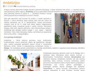 Reklaminiai tekstai Straipsniai Aprašymai (LT/ENG) / Irena J. / Darbų pavyzdys ID 1006879