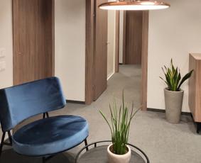 Interjero dizainas, baldų projektavimas / Eglė Aravičiūtė / Darbų pavyzdys ID 1022249