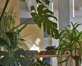 Žaliųjų erdvių įrengimas, gėlių priežiūra
