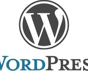 WWW Service (interneto svetainių turinio kėlimas)