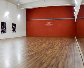 Didžioji studijos salė. 350 kv. m.