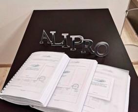 Architektūros projektavimas, leidimai statyti