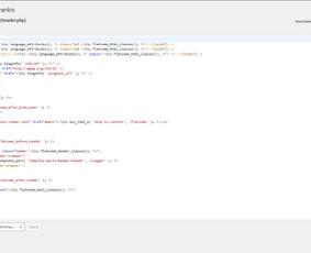 Klaidų taisymas, įskepių modifikavimas, teksto/content'o redagavimas.