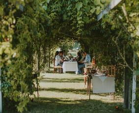 Vestuvių šventė vynuogyne Nuotrauka: www.baltiremeliai.lt/ Daugiau apie šias vestuves: https://www.facebook.com/221162067979189/photos/?tab=album&album_id=1067622473333140