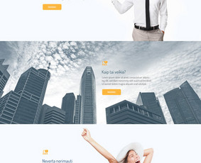 Profesionalus Dizainas / Logotipai / UI/UX / HTML5 Banneriai / Tomas Korsakas / Darbų pavyzdys ID 211945