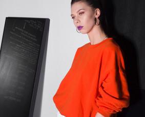 Eksterjero, interjero fotografė / Viktorija Karpovaitė / Darbų pavyzdys ID 223107