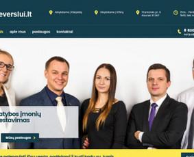 Interneto svetainė nedidelei, bet specializuotai statybos įmonių konsultavimo kompanijai.