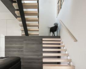Architektūra / Dizainas / Statybos teisė/maketavymas/ / 2mm architektai / Darbų pavyzdys ID 270349