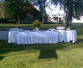 Paisruošimas aišems gamtoje ( vestuvių antra diena)