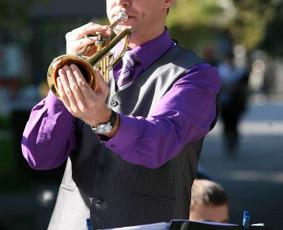 Trimito melodija - muzikanto paslaugos (Justinas Straukas)
