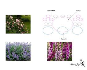 Aplinkos apželdinimo projektavimas / Rolanda / Darbų pavyzdys ID 291283
