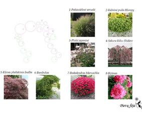 Aplinkos apželdinimo projektavimas / Rolanda / Darbų pavyzdys ID 291285