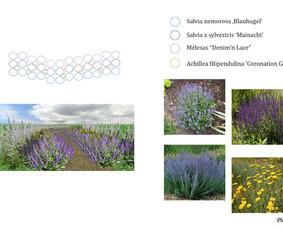 Aplinkos apželdinimo projektavimas / Rolanda / Darbų pavyzdys ID 291291