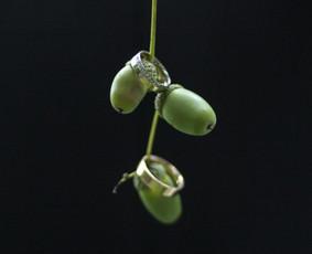 Tiny Ruth photography / Ruta / Darbų pavyzdys ID 324365