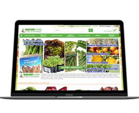 WEB / Mobile / Software Programuotojas / MB Virtualūs sprendimai / Darbų pavyzdys ID 337047