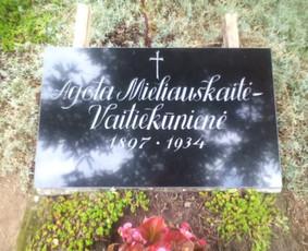 Raidžių Kalimas, paminklų restauravimas, akmens plokštės