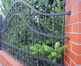 Tvoros, kiemo vartai.