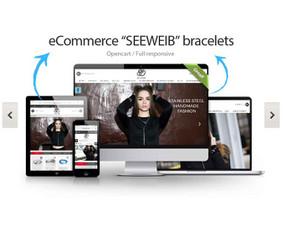 Profesionalios internetinių puslapių kūrimo ir dizaino pasla