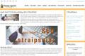 Šį straipsnį galite paskaityti http://www.rasytojas.lt/kaip-rasyti-siuolaikiska-seo-straipsni.html