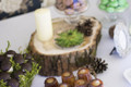 Saldus stalas miško tema