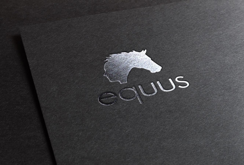 "Jojimo mokykla ""equus"" /logotipas"