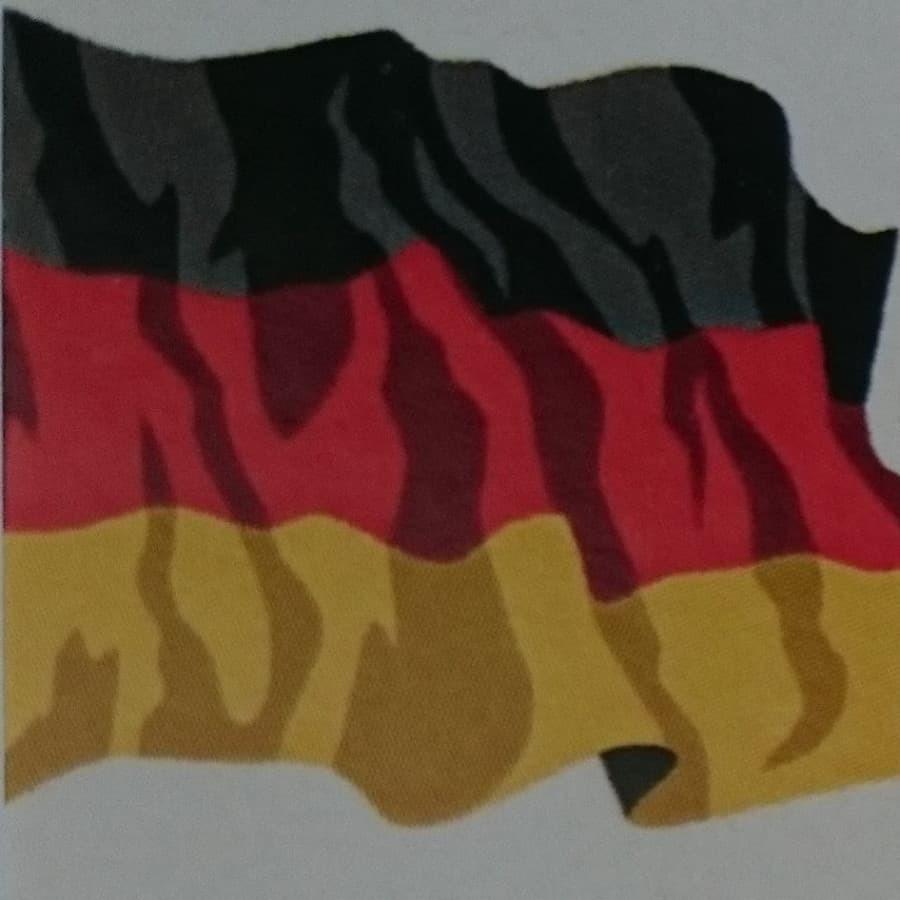 dalykiniai vertimai vokiečių kalba, lankstus atvykimas