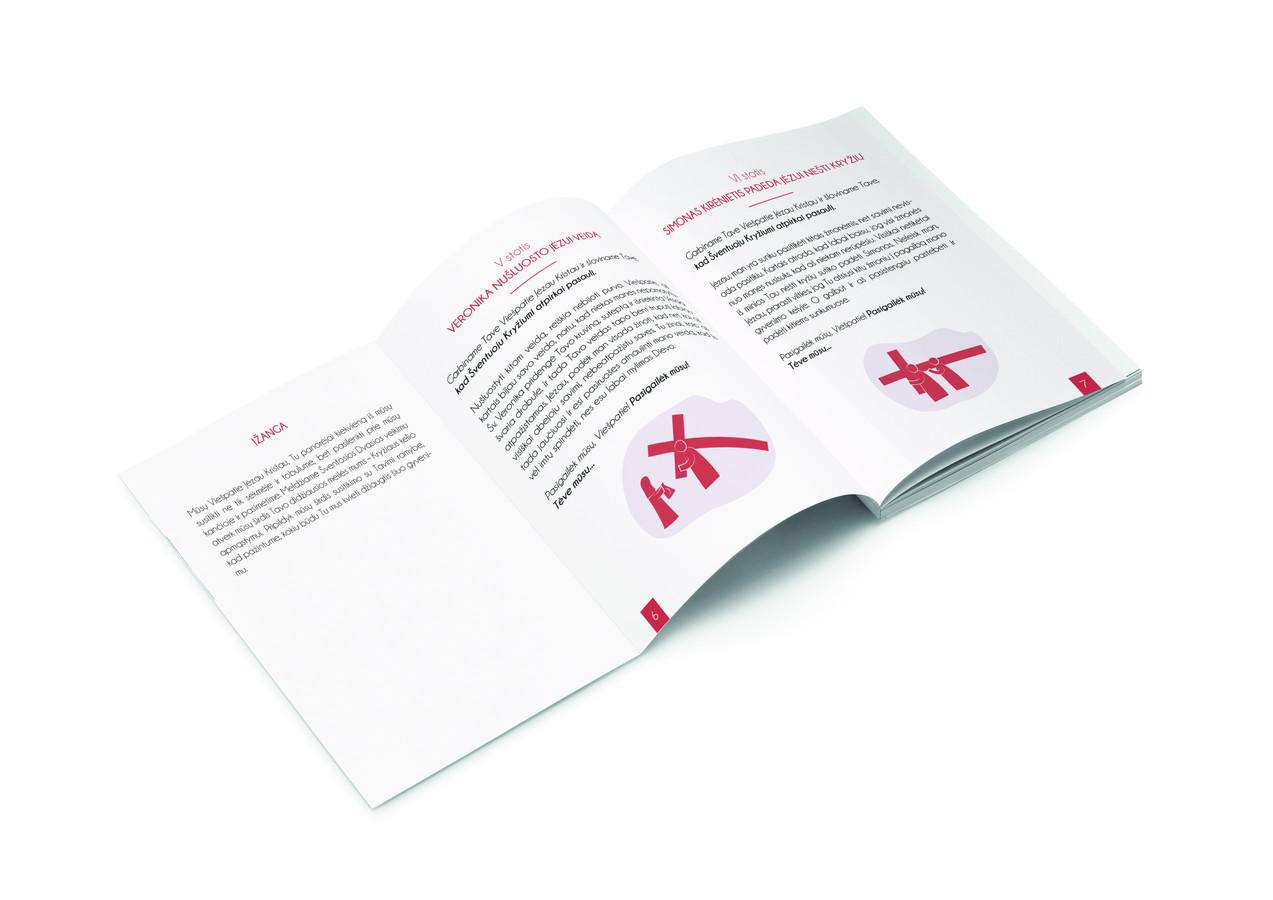 Viršelio dizainas, tekstui reikalingų iliustracijų kūrimas.