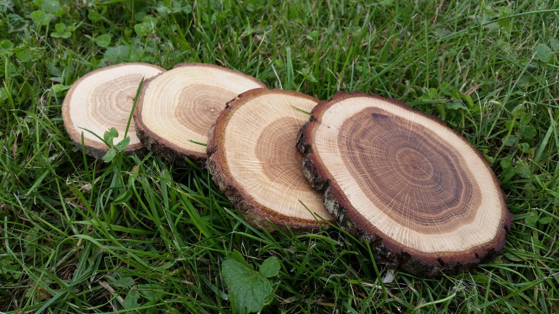 Ąžuolo medienos padėkliukai. Impregnuoti aliejumi. Storis 1 cm, diametras 8-12 cm.