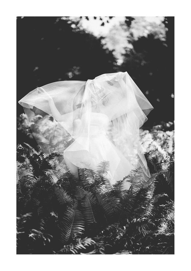 Vestuvių fotografija   https://www.facebook.com/MindaugasSerna/