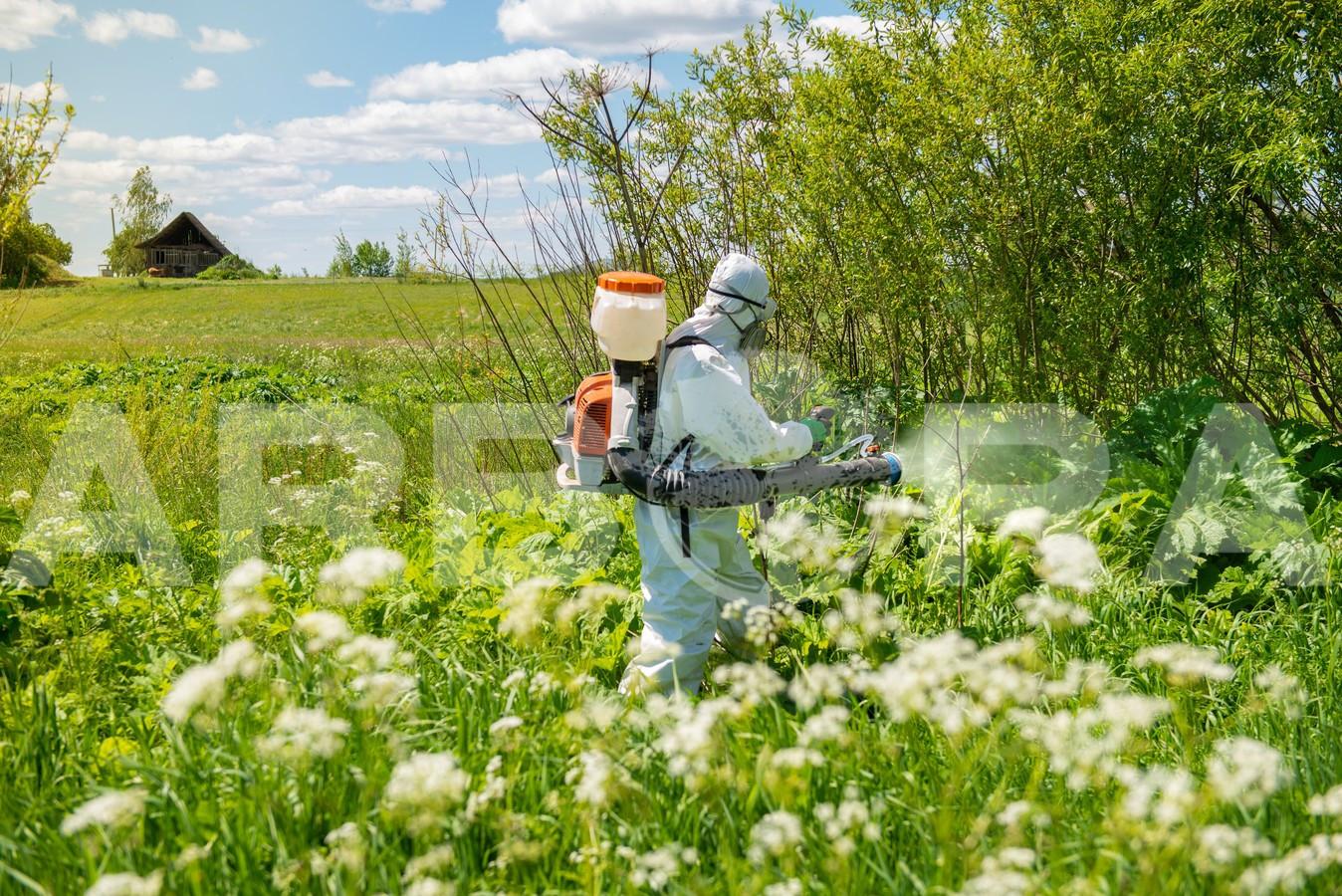 ?Mechanizuotas augalijos naikinimas (frezavimas). ?Sosnovskio barščių ir kitų invazinių rūšių augalų naikinimas. ?Piktžolių naikinimas.