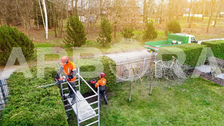 ?Žemų iki 1 metro aukščio gyvatvorės medžių ir krūmų. ?Vidutinių nuo 1 iki 2 metrų aukščio gyvatvorės medžių ir krūmų. ?Aukštų nuo 2 metrų aukščio gyvatvorės medžių ir krūmų.