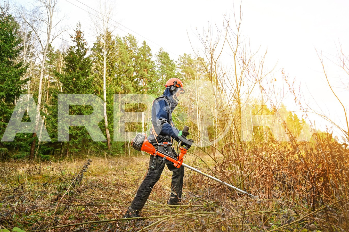 ?Teritorijos išvalymas ir išlyginimas statybvietės paruošimui. ?Apleistų sklypų, sodybų, parkų ir kitų teritorijų valymas. ?Miško retinimas ir pamiškių tvarkymas.