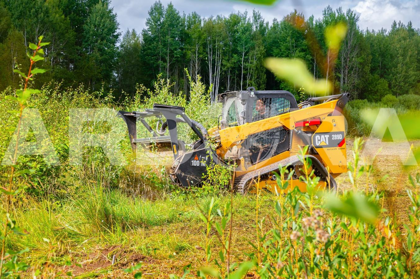 ?Krūmų, krūmokšnių kirtimas, pjovimas, smulkinimas ir išvežimas. ?Mechanizuotas krūmynų naikinimas (mulčiavimas). ?Krūmų šaknų naikinimas. ?Biokuro gamyba, medienos bei žaliavos biokurui ruoša.