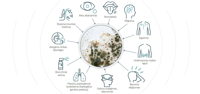 Daugelis ligų, kurias sukelia pelėsinių grybų sporos, yra sunkiai diagnozuojamos, todėl dažnai pacientų gydymas neveiksmingas.