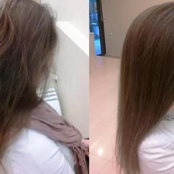 Norėtumėte atsiauginti plaukus, bet jie nuolat lūžinėja ir šakojasi? Arba plaukai labai reti ir ploni, ir šukuosena neturi norimos apimties? O gal jūsų plaukai atrodo sausi ir blankūs? Jeigu jums aktualios šios problemos, plaukų laminavimas gali būti jūsų išsigelbėjimas.šypsena Laminavimas yra procedūra, po kurios jūsų plaukai pasidaro pastebimai storesni, įgauna tankį, lygų paviršių, blizgesį ir elastingumą. Laminavimo metu kiekvienas plaukas apgaubiamas plėvele, tokiu būdu išlyginami visi jo nelygumai, pažeistos vietos, plaukas geriau atspindi šviesą ir įgyja sveiką blizgesį.Itin gerai laminavimas atstato blonduotus ar dažytus plaukus, perdžiovintus arba pažeistus cheminiais dažikliais nuolat juos dažant. Plaukų laminavimas visiškai nekenksmingas, jį galima atlikti net nėštumo metu, nes sudėtyje nėra pažeidžiančių plaukus cheminių komponentų. Emmediciotto kosmetika yra unikali dėl sudėtyje naudojamo argano aliejaus, kuris suteikia plaukams išskirtines savybes: - SUTRUMPĖJA SUSIŠUKAVIMO/ PLAUKŲ DŽIOVINIMO LAIKAS; - PUIKIOS IŠPAINIOJIMO SAVYBĖS; - MAKSIMALUS BLIZGESYS; - STIPRUS DRĖKINIMAS; - PLAUKAI NEAPSUNKSTA;