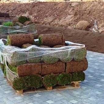 Atliekame vejos pjovimo, įrengimo darbus / Marius / Darbų pavyzdys ID 14452