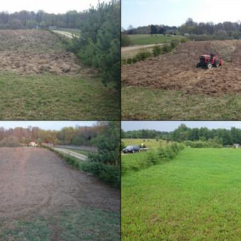 Atliekame vejos pjovimo, įrengimo darbus / Marius / Darbų pavyzdys ID 14453