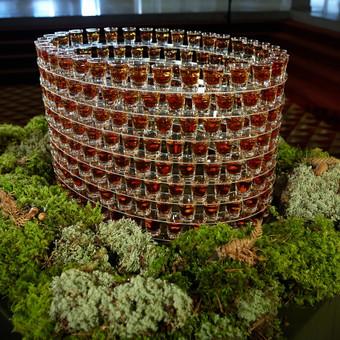 Atkurtas K29, 8 aukstu pastatas kuris yra Konstitucijos prospekte iš 300 šotų- Cognac Nut
