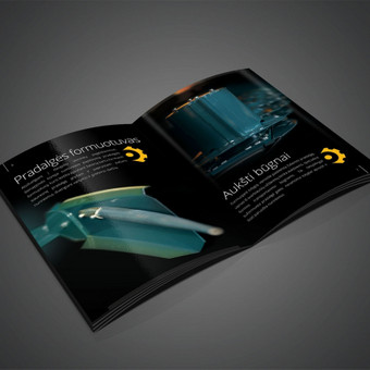 Brošiūra. http://issuu.com/karolisrimkus/docs/brosiura_-_sienapjove_praha_gx_265_